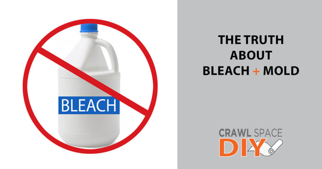 The Truth About Bleach & Mold | Cleaning Alternatives | Crawl Space DIY